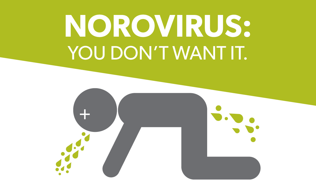 norovirus-1080×655